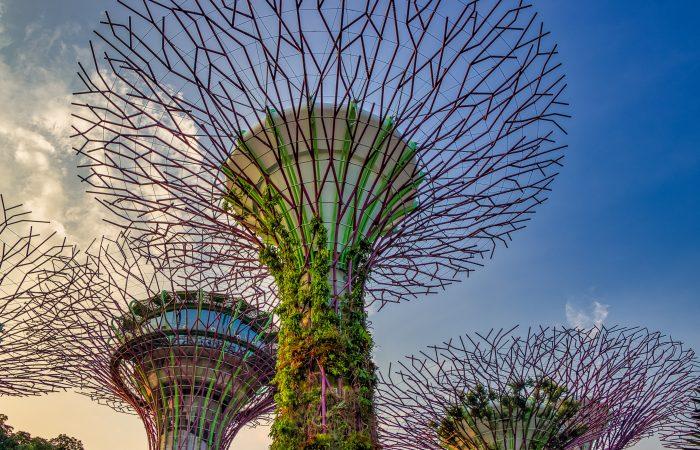 Cơ hội học bổng du học Singapore